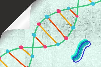 超越基因的遗传:你遗传给后代的也许不只是基因信息