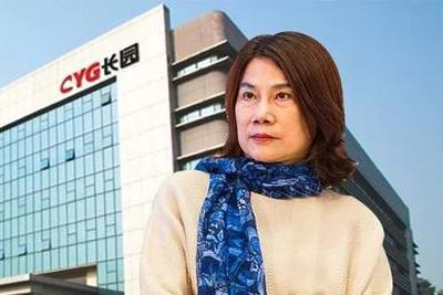 """格力52亿收购长园 董小姐的新""""替补""""能行吗?"""