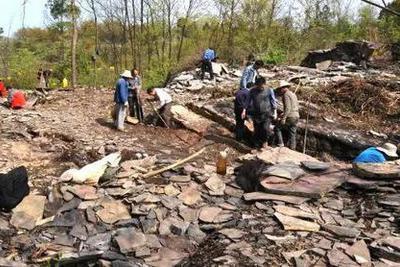 """报告!中国发现了地球上最古老的""""脚印""""!"""