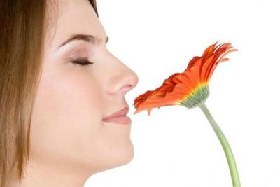 新发现:嗅觉灵敏的女性 与另一半共赴云雨时更嗨