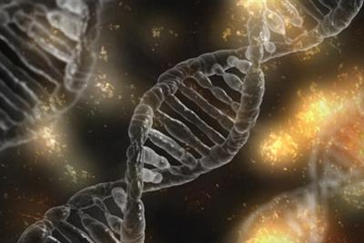 美国研发DNA存储数据:1EB(10亿GB)起步