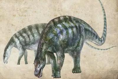 """中国又现新恐龙!它来自西北,是梁龙家的""""老大哥"""""""