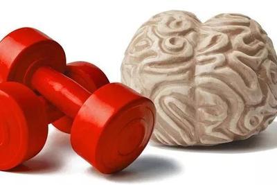 大脑居然不是用来思考的?可能是为了控制动作而产生