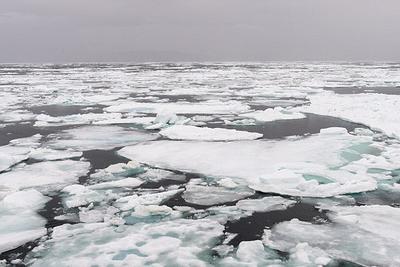 """北极海域古老海冰首次出现裂缝 被称为""""最后冰区"""""""