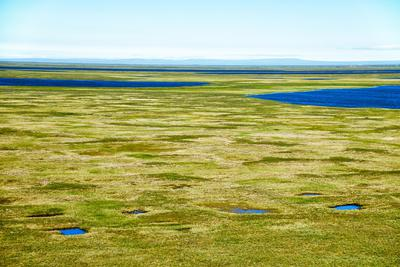 """北极消融将快速释放永久冻土层的""""远古深层碳"""""""
