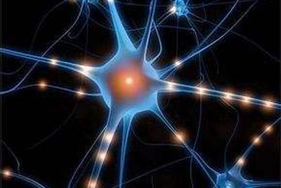 研究认为皮肤活检有助于诊断一类罕见神经系统疾病