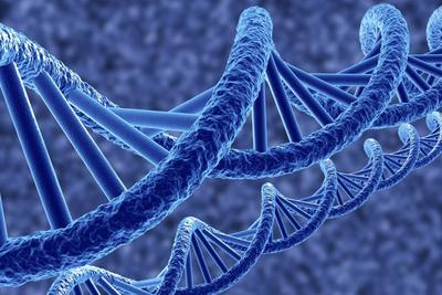 我国基因组深度注释研究取得重要进展
