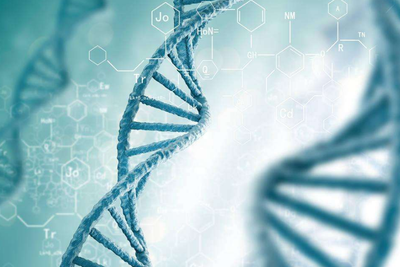 华大基因举报门再发酵:王德明称要在基因库总部自杀
