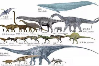 关于远古巨兽消失几种猜测:3米高巨猿,7米长的巨蜥