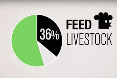 人造肉公司上市破纪录,主要客户并不是素食者