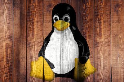 """Ubuntu创始人:为什么Linux在桌面领域会""""失败"""""""