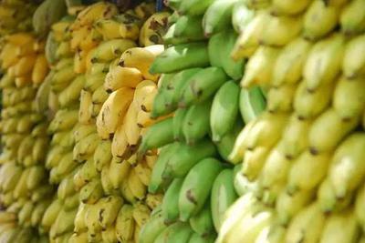 唯一能吃得起的香蕉,可能到了最危险的时刻