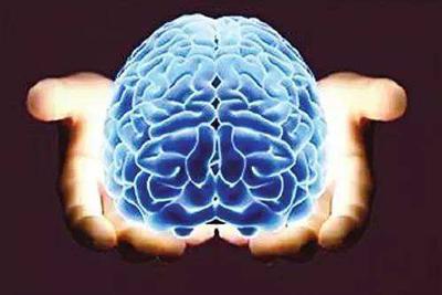 大脑衰老是否可逆取决于生长环境够不够软_绵阳网赚论坛