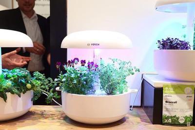 IFA2019:在家种菜要流行?博世推出室内种菜智能产品