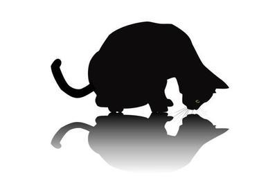 如何偷窥薛定谔的猫而不打扰它?