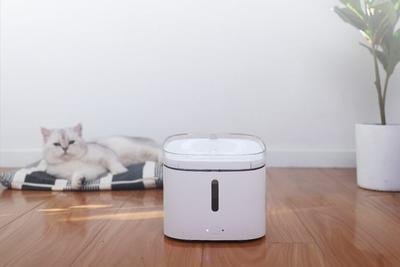 宠物也能享受科技美好 小顽智能宠物饮水机开启众筹