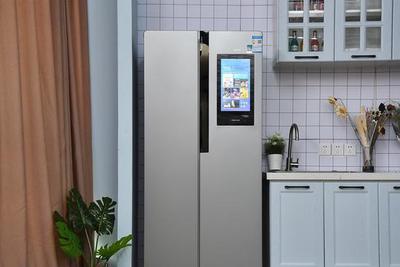 入门级智能冰箱首选:云米云小鲜冰箱评测