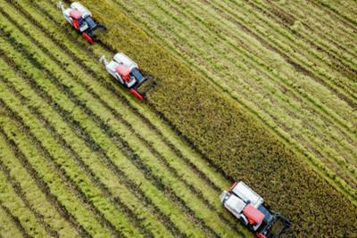 """尝鲜直播带货开通""""牛奶班列"""" 中东欧农产品寻路中国"""