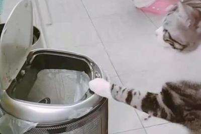 """智能垃圾桶陷质量体验""""局中局"""":买垃圾桶结果买了个垃圾"""