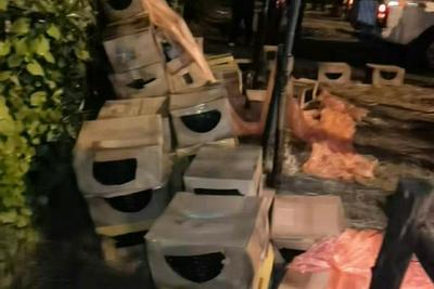 中通回应上海嘉定宠物盲盒事件:不属实,网点已报警