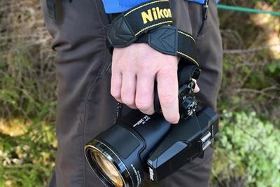 尼康Coolpix长焦相机迎来固件更新:修复bug