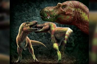 科学家揭示霸王龙的主要打斗方式:咬脸