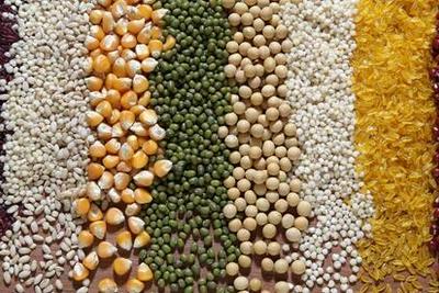 为什么我们现在仍然解决不了全球粮食不安全问题?