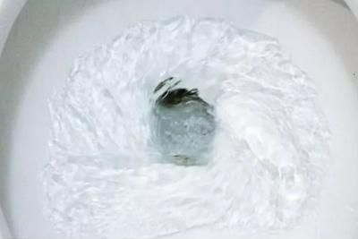 到底能不能在马桶里看到科氏力的漩涡?