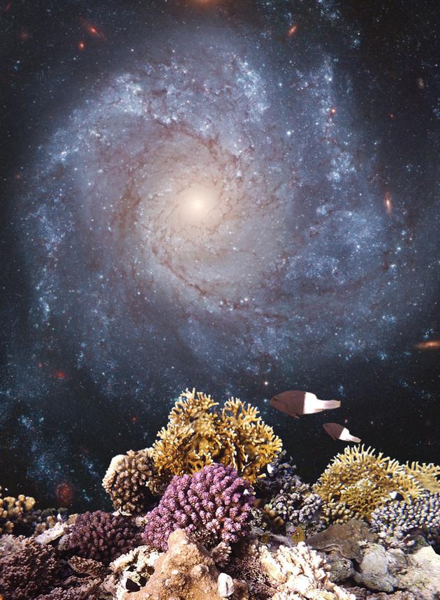 一颗恒星的爆发会如何影响地球上的生命?