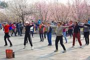 广场舞创业进入洗牌期,只因没看懂其实是领队经济