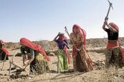 印度农村经济体为何发展缓慢