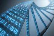 投资者如何鉴别区块链技术研究真伪?
