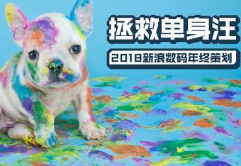 2018春节年终策划