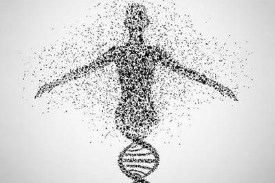 """中国人类基因组研究有望""""弯道超车"""""""