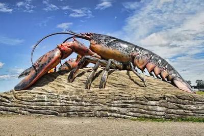龙虾会感到痛吗?瑞士宣布禁止餐厅活煮龙虾