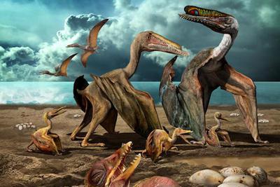 中国古生物学十大进展发布 揭秘翼龙生命史等入选