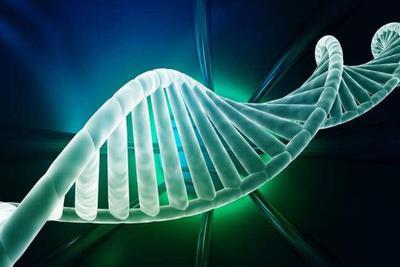 基因表达模式或可精准确定死亡时间 将影响法医鉴定