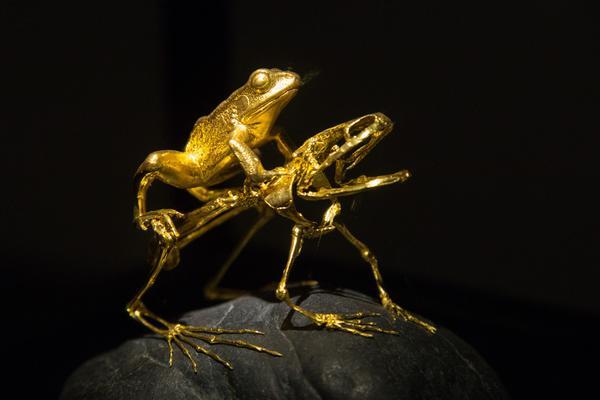 """蕾丝内裤、青蛙抱对""""金雕木刻展览""""让人看得""""羞羞"""""""