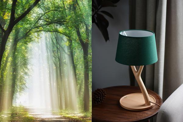 最接近自然之美的台灯
