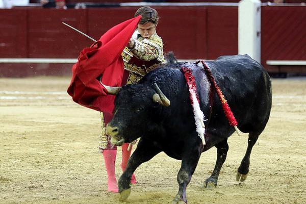 西班牙斗牛士在哥伦比亚被公牛顶飞刺伤臀部
