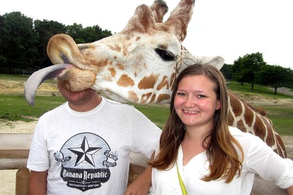 """不只是脖子长!看动物界""""高妹""""长颈鹿花式搞笑"""