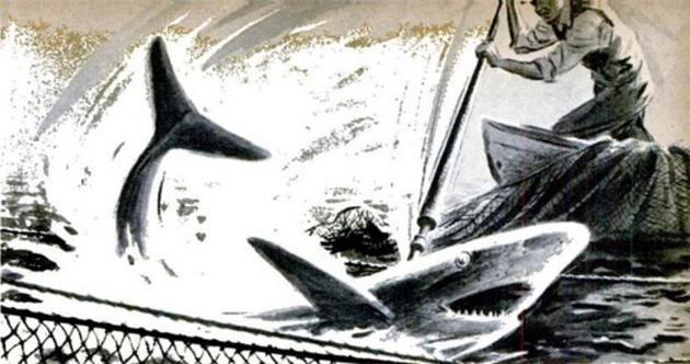 自家组装的鲨鱼枪,1949年1月