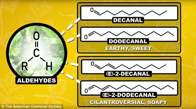 """虽然有两种醛类化合物闻起来芳香甜美、清新怡人,但还有一种化合物则有着""""肥皂""""的气味。"""