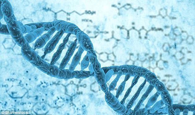 人们认为,除基因之外,父母教育、在子宫中吸收的营养成分和化学物质等环境因素也对个人智商起到了关键影响。