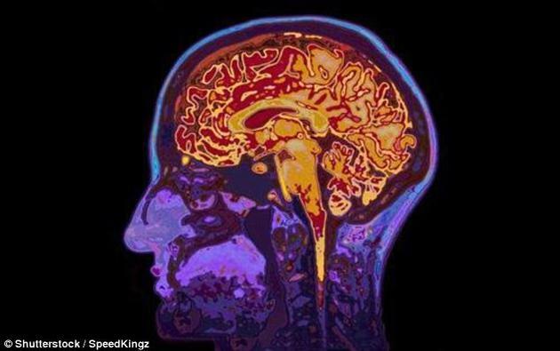 新研究表明:因5亿年前远古病毒入侵使人类具备高级思维能力