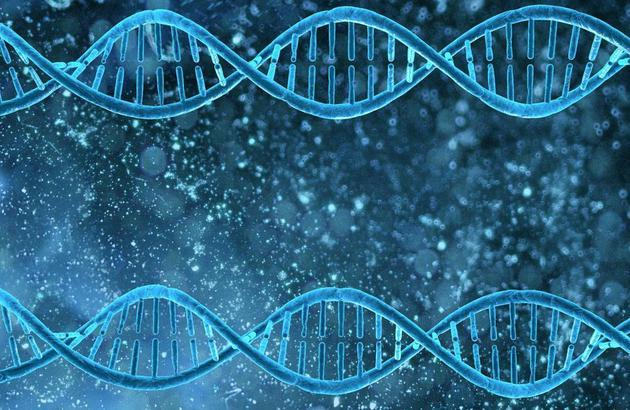 《科学大家》|北邮教授用家谱详解区块链的前世今生
