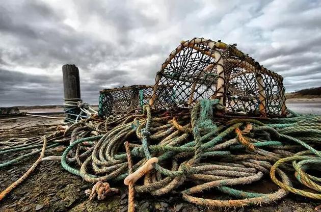 用来捕捉螃蟹和龙虾的笼子