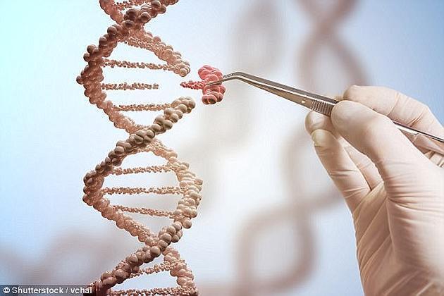 2017年11月经过DIY基因编辑处理之后,赞内尔在网络上直播编辑自身DNA的过程,他承认这项实验并未达到之前预期的效果,但他表示类似的动物基因实验只有在4-6个月之后才显现出实验效果。