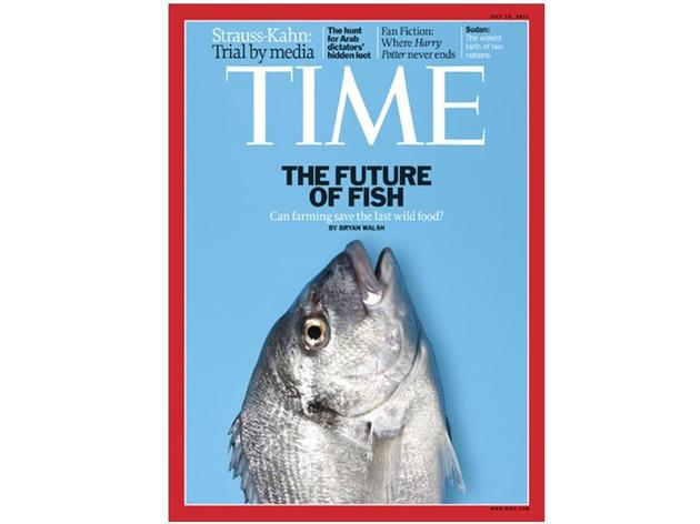 《科学大家》|我们能否培育出既美味又无小刺的鱼