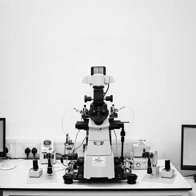这台特制显微镜可用来进行胚胎检查和卵胞浆内单精子显微注射。